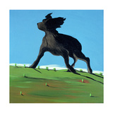 Amazing Black Dog, 2000 Giclee Print by Marjorie Weiss