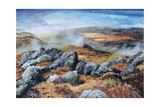 Langdales Top, Cumbria, 2008 Giclee Print by Trevor Neal