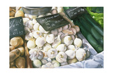 White Onions, 1999 Giclee Print by Peter Breeden