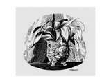 Aspidistra in a Bowl, 1950s Giclee Print by George Adamson