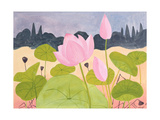 Lotus in the Garrigue, 1984 Giclee Print by Marie Hugo