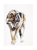 European Wolf Giclee Print by Mark Adlington