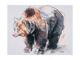 European Brown Bear, 2001 Giclee Print by Mark Adlington