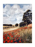Wild Poppies, Hertfordshire, 2010 Giclee Print by Cruz Jurado Traverso