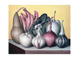 Allium Attaches, 2005 Giclee Print by Brian Irving