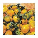 Mandarins, 2004 Giclee Print by Pedro Diego Alvarado