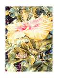 Tree Frog and White, Yellow and Pink Hibiscus, 1989 Giclee Print by Sandra Lawrence