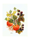 Brambles, Apples and Grapes Giclee Print by Nell Hill
