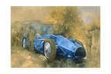 Bluebird at Brooklands Giclee Print by Peter Miller