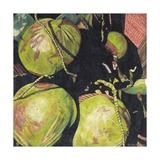 Coconuts, 2003 Giclee Print by Pedro Diego Alvarado