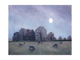 Moonlit Night, 2004 Reproduction procédé giclée par Ann Brain