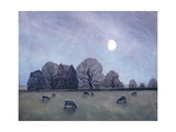 Moonlit Night, 2004 Giclee Print by Ann Brain
