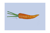 Carrot, 2007 Giclee Print by Sarah Thompson-Engels