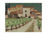 Vineyard, Provence Giclee Print by Eric Hains