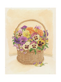 Basket of Pansies, 1998 Giclee Print by Linda Benton
