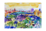 Central Park, New York, 2011 Giclee Print by Peter Graham