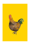 Cock, 2008 Giclee Print by Sarah Thompson-Engels
