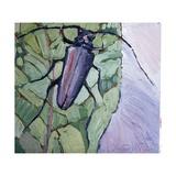 Musk Beetle, 1991 Giclee Print by Peter Wilson