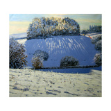 Field of Shadows, Near Youlgrave, Derbyshire Giclee Print by Andrew Macara
