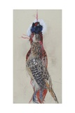 Winter Pheasant, 2007 Giclee Print by Lara Scouller