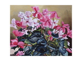 Cyclamen, 2004 Giclee Print by Christopher Ryland