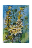 Yellow Rose and Loosestrife, 1983 Giclee Print by Brenda Brin Booker