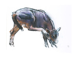 Scratching Calf, 2006 Giclee Print by Mark Adlington