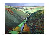 Coombe Valley Gate, Exmoor, 2009 Giclee Print by Anna Teasdale