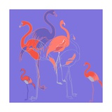 Flamingoes Giclee Print by Anna Platts