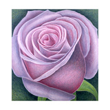Big Rose, 2003 Giclee Print by Ruth Addinall