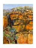 Cliff Face Giclee Print by Margaret Coxall