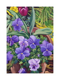 Flowerpots with Pansies, 2007 Giclee Print by Christopher Ryland