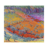 Midday at Alhaurin El Grande, C.1975 Giclee Print by Brenda Moore