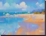 Playa 14 Stretched Canvas Print by Alex Krioutchkov