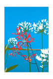 Mombrectia Giclee Print by Tom Holland