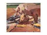 Pigs in Sunlight and Mud, 1981 Giclee Print by Peter Wilson
