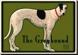 Greyhound Stretched Canvas Print by Laura Wilder