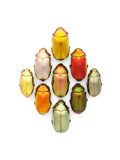 Jewel Scarab Diamond Photographic Print by Christopher Marley