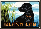 Black Lab Stretched Canvas Print by Laura Wilder