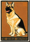 German Shepherd Stretched Canvas Print by Laura Wilder