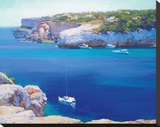 Cala Llombards Stretched Canvas Print by Alex Krioutchkov