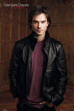 Vampire Diaries - Damon (Ian Somerhalder) Television Poster Posters