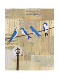 Swallows on Wire Giclee Print by Lorena Siminovich