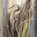 Coastal Heron Art by Brent Heighton