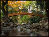 Footbridge over Stream Framed Canvas Print by Robert Glusic