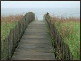 Wooden Walkway to Beach Framed Canvas Print by Peter Finger