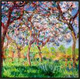 Printemps a Giverny, 1903 Framed Canvas Print by Claude Monet