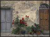 Tuscan Doorway in Castellina in Chianti, Italy Framed Canvas Print by Walter Bibikow