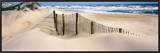 Outer Banks, North Carolina, USA Framed Canvas Print by  Panoramic Images