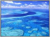 Australia's Great Barrier Reef Framed Canvas Print by Theo Allofs